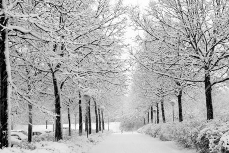 9 Tips for Winter Running