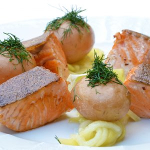 salmon-food-pumpkin-42270-1