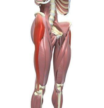 iliotibial it band syndrome - the causes, treatment & rehabilitation, Human Body