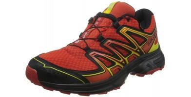 An in depth review of the Salomon Wings Flyte 2 GTX