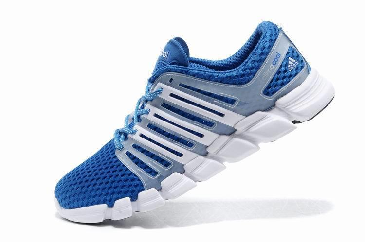 Climacool Ride Shoes Review