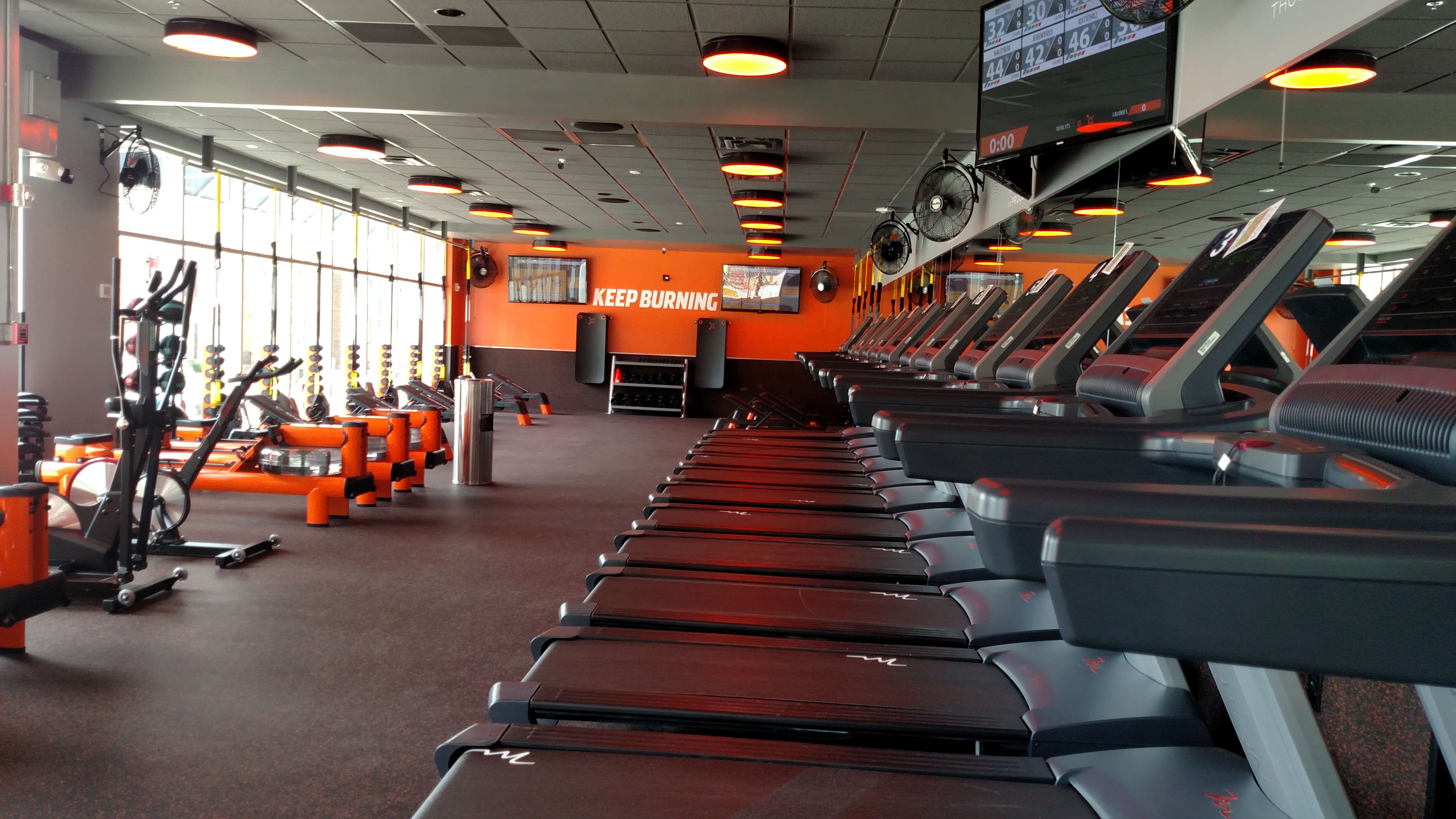 The Workout Room Consists Of Treadmills, Rowing Machines, Free Weights,