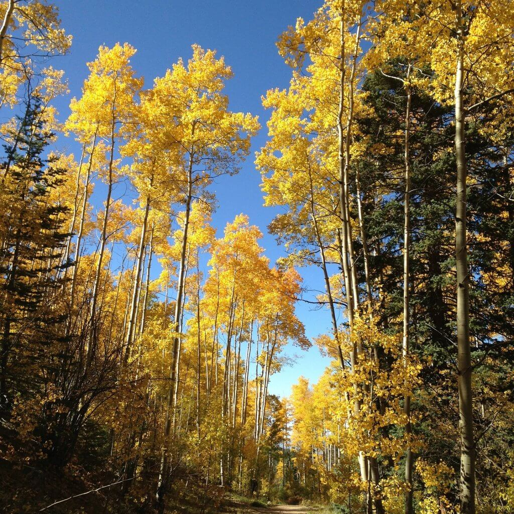 best-time-to-visit-maroon-wilderness-area