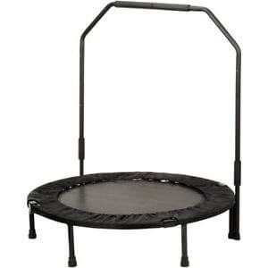 Sunny Health and Fitness workout trampoline