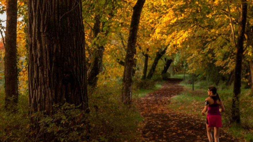 changes to make to your running when fall arrives