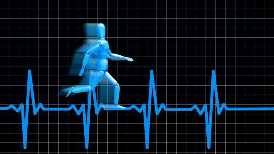 Heart Rate Zone or Pace: Which is Best to Use for Training?