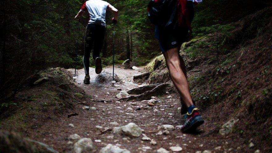Trail Running Hazards: How to Keep From Getting Injured Out There