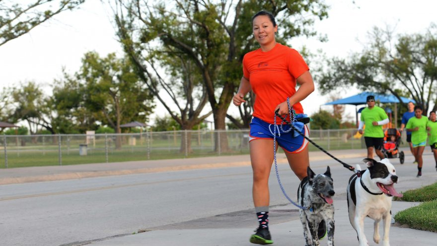 Is it too hot/cold to take your dog for a run?